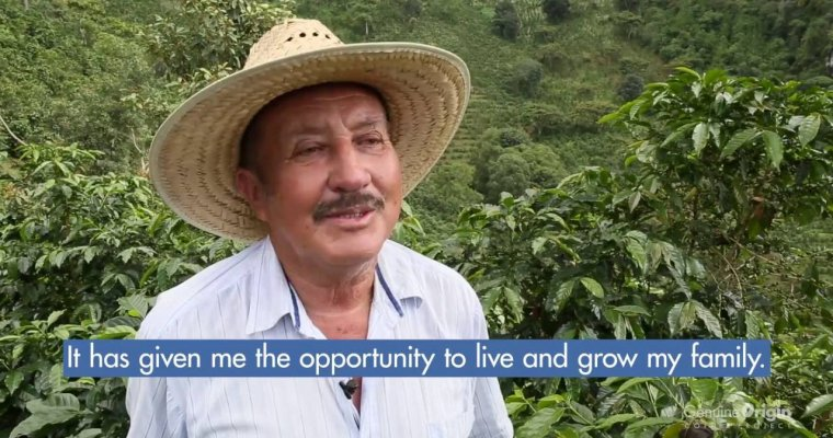 The Genuine Origin Coffee Project | Guatemala