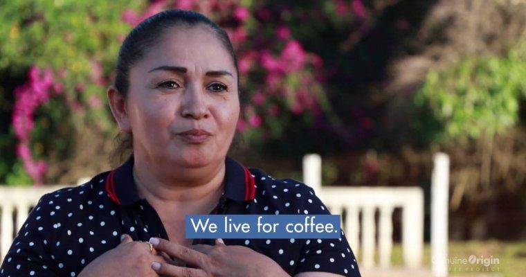 The Genuine Origin Coffee Project | Honduras