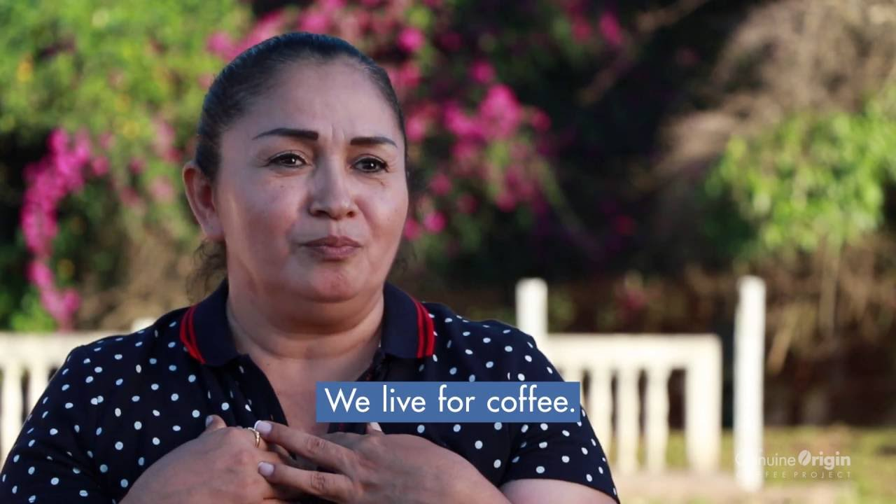 The Genuine Origin Coffee Project | Honduras