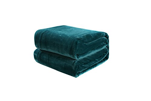 Winter Flower Fleece Throw Blanket, Super Luxury Soft Fluffy Warm and Cuddly, Lightweight, Breathable, Suitable for Sofa, Bed and Chair, 180x220cm, Teal
