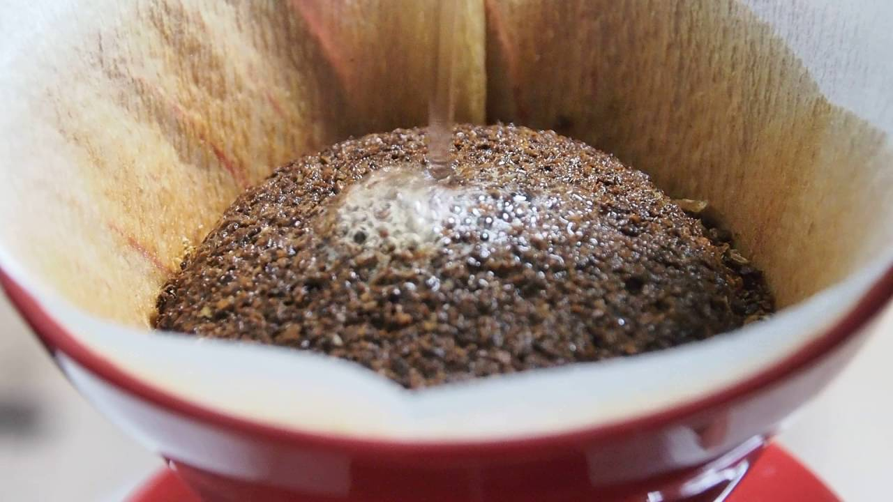 V60 Traditional Method Brewing by Coffee Explorer